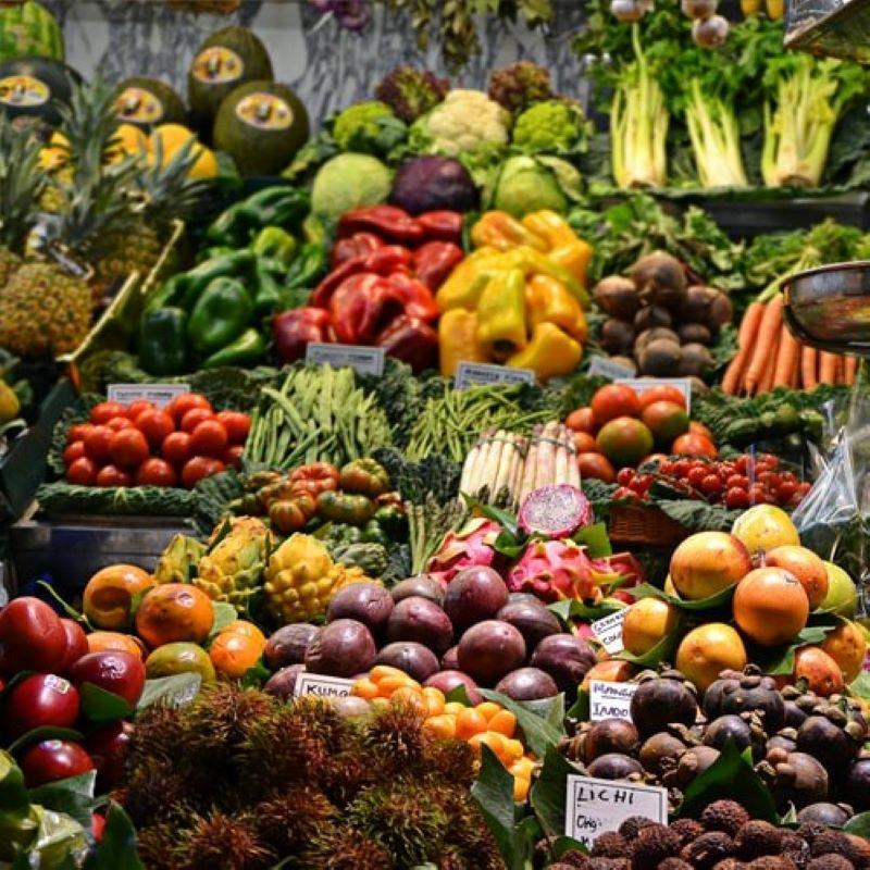 食品廃棄物をビジネス化?身近なフードロス対策の写真