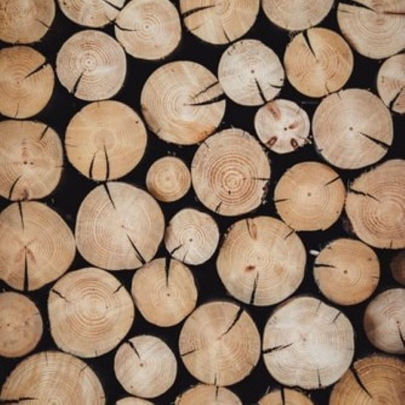 放置林を活性化!端材利用でヒット商品誕生。の写真