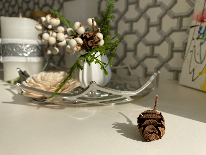 Limei Food&Arts 玉置里美秋のインテリアのサムネイル
